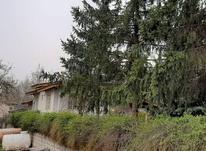 فروش زمین مسکونی 550 متر در کلاردشت در شیپور-عکس کوچک