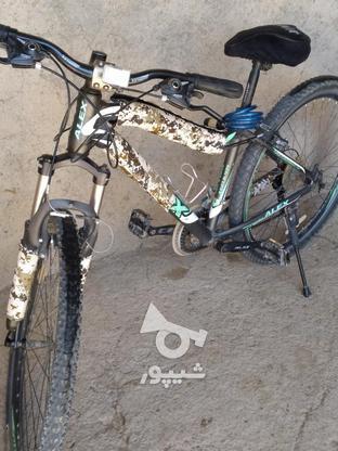 دوچرخه نو کار کرده 27.5 الکس در گروه خرید و فروش ورزش فرهنگ فراغت در مرکزی در شیپور-عکس5