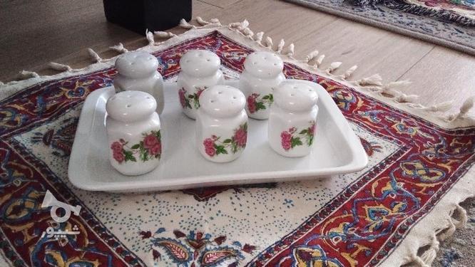 پیش دستی گل سرخی همه سالم  در گروه خرید و فروش لوازم خانگی در تهران در شیپور-عکس7