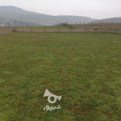 زمین مسکونی 2000 متر در واحد در گروه خرید و فروش املاک در مازندران در شیپور-عکس1