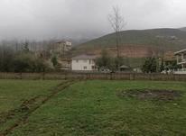 زمین مسکونی 440 متر  در شیپور-عکس کوچک