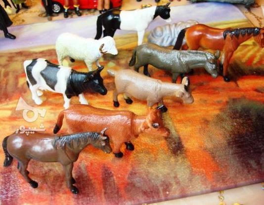 فیگور حیوانات (گاو , اسب, بز, گوسفند) در گروه خرید و فروش ورزش فرهنگ فراغت در تهران در شیپور-عکس2