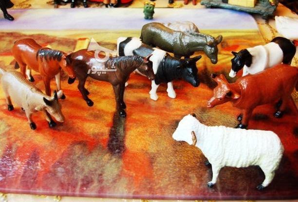 فیگور حیوانات (گاو , اسب, بز, گوسفند) در گروه خرید و فروش ورزش فرهنگ فراغت در تهران در شیپور-عکس3
