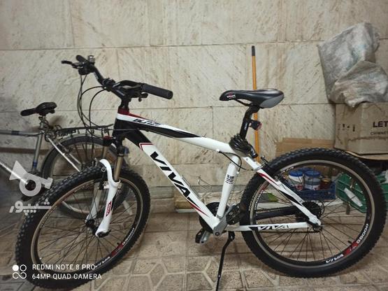 دوچرخه ویوا بلیز نو یک ماه خریداری شده در گروه خرید و فروش ورزش فرهنگ فراغت در مرکزی در شیپور-عکس5