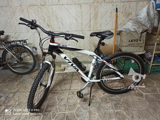 دوچرخه ویوا بلیز نو یک ماه خریداری شده در گروه خرید و فروش ورزش فرهنگ فراغت در مرکزی در شیپور-عکس1