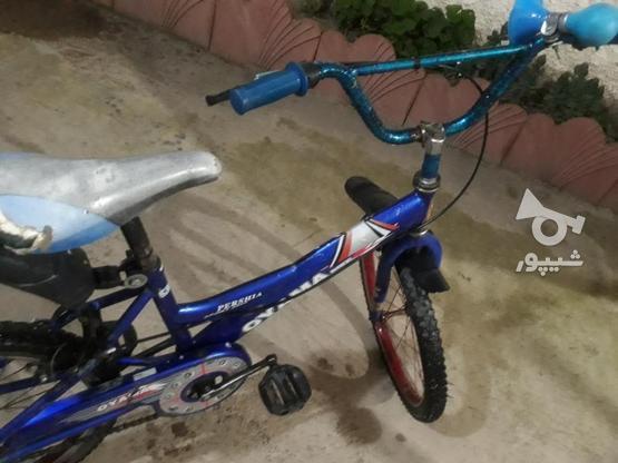 دوچرخه عالی  در گروه خرید و فروش ورزش فرهنگ فراغت در مازندران در شیپور-عکس4