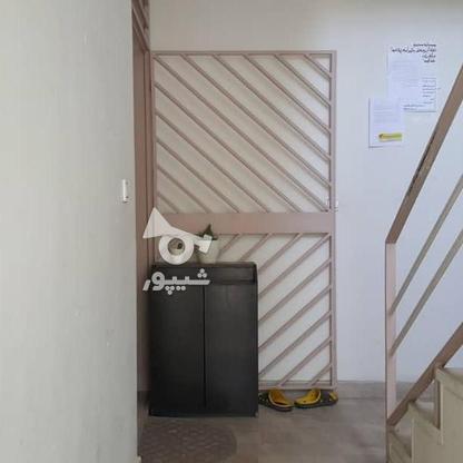 فروش آپارتمان 53 متر در فلکه چهارم و پنجم در گروه خرید و فروش املاک در البرز در شیپور-عکس4