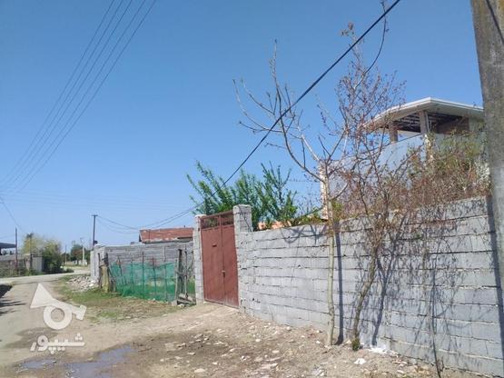 زمین مسکونی 211 متری در روستای جنید در گروه خرید و فروش املاک در مازندران در شیپور-عکس2