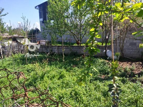 زمین مسکونی 211 متری در روستای جنید در گروه خرید و فروش املاک در مازندران در شیپور-عکس5