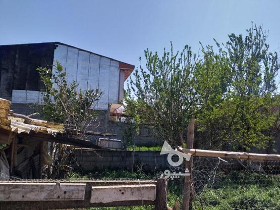 زمین مسکونی 211 متری در روستای جنید در گروه خرید و فروش املاک در مازندران در شیپور-عکس4