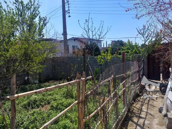 زمین مسکونی 211 متری در روستای جنید در گروه خرید و فروش املاک در مازندران در شیپور-عکس3