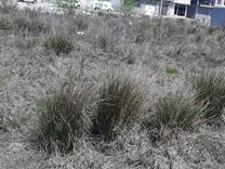 زمینی به مساحت 98 متر با موقعیت عالی به فروش میرسد در شیپور