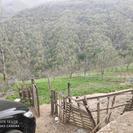 زمین ویلایی با ویو عالی در روستای گیلده
