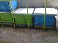 جعبه کندوی عسل در شیپور-عکس کوچک