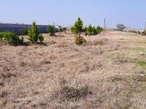 فروش زمین مسکونی شهرکی  200 متر به بالا  در محمودآباد در شیپور