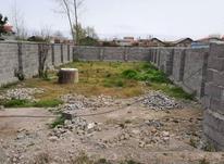 فروش زمین مسکونی 292 متر در چاف و چمخاله در شیپور-عکس کوچک