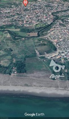 زمین بر اول دریا/محصور شده/مناسب شهرک سازی/سند تک برگ در گروه خرید و فروش املاک در گیلان در شیپور-عکس3
