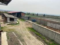 فروش و معاوضه دامداری صنعتی3200متری در شیپور