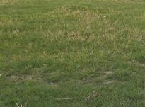 زمین 200 متری محمودآباد شهرکی در شیپور-عکس کوچک