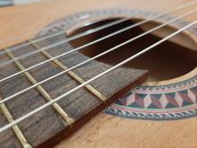 گیتار کلاسیک رویال در شیپور