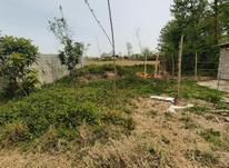 فروش زمین باغی 150متری در شیپور-عکس کوچک
