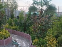 ارائه کلیه خدمات باغبانی و فضای سبز  در شیپور