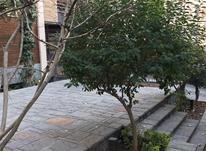 فروش آپارتمان 180 متر در قیطریه در شیپور-عکس کوچک