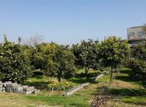 فروش زمین پلاک بندی بافت مسکونی از 180 تا 300متر در شیپور-عکس کوچک