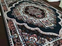 فرش 12متری عباس عنصری در شیپور-عکس کوچک