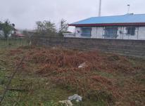 فروش زمین مسکونی 314 متر در رضوانشهر در شیپور-عکس کوچک