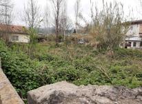 زمین داخل بافت 675 متر در چالوس در شیپور-عکس کوچک