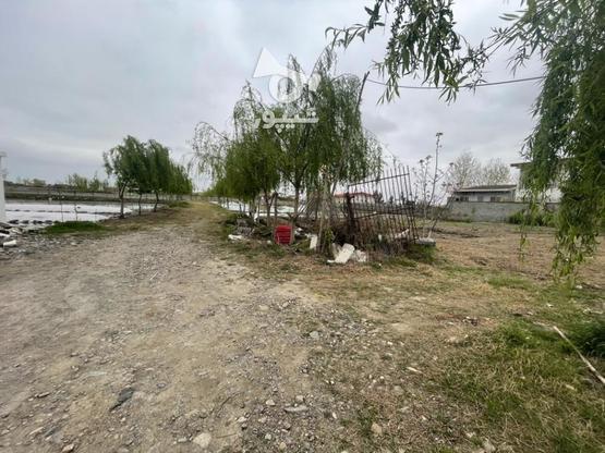 زمین شهرکی زیر قیمت منطقه در گروه خرید و فروش املاک در مازندران در شیپور-عکس1