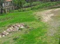 فروش زمین مسکونی 400 متر در ماسال در شیپور-عکس کوچک