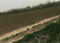 580متر زمین سعید اباد در شیپور-عکس کوچک