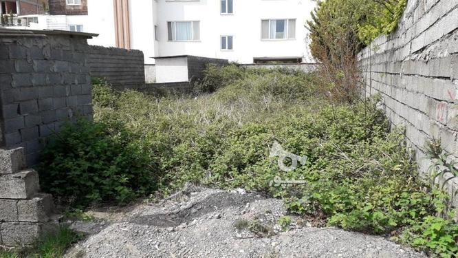 زمین با کاربری مسکونی؛ساحلی_جنگلی در گروه خرید و فروش املاک در مازندران در شیپور-عکس3