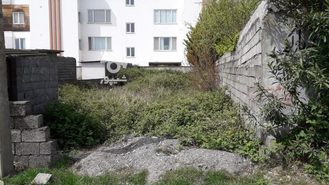 زمین با کاربری مسکونی؛ساحلی_جنگلی در گروه خرید و فروش املاک در مازندران در شیپور-عکس1