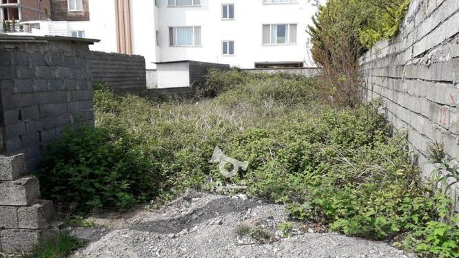 زمین با کاربری مسکونی؛ساحلی_جنگلی در گروه خرید و فروش املاک در مازندران در شیپور-عکس2