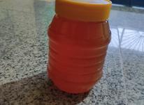 عسل درجه یک  در شیپور-عکس کوچک