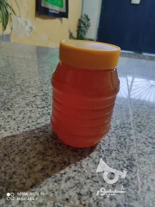عسل درجه یک  در گروه خرید و فروش خدمات و کسب و کار در مازندران در شیپور-عکس1