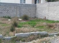 زمین مسکونی 122 متر در دانش بابلسر در شیپور-عکس کوچک