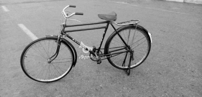 دوچرخه چینی سه مار اصل در گروه خرید و فروش ورزش فرهنگ فراغت در اصفهان در شیپور-عکس1