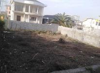 فروش زمین 288 متر خوش قواره در چالوس در شیپور-عکس کوچک