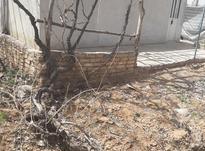 فروش 1جریب باغ در کهریز  در شیپور-عکس کوچک