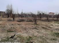 فروش یک جریب نیم باغ در بیگیر با امکانات در شیپور-عکس کوچک