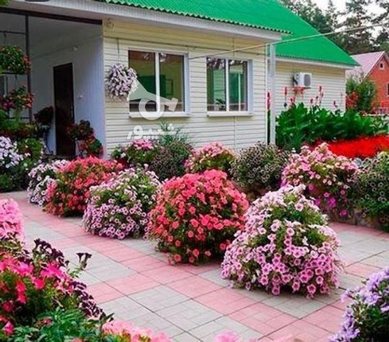 خدمات باغبانی حرفه ای در گروه خرید و فروش خدمات و کسب و کار در مازندران در شیپور-عکس3