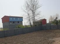 فروش زمین مسکونی 359 متر در چاف و چمخاله در شیپور-عکس کوچک