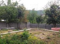 فروش زمین مسکونی 400 متر در آمل در شیپور-عکس کوچک