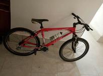 دوچرخه ی کوهستانی  در شیپور-عکس کوچک