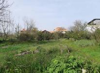 فروش زمین مسکونی 1400 متر در دستک لب ساحل در شیپور-عکس کوچک