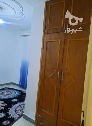 فروش آپارتمان 80 متر در تالش در گروه خرید و فروش املاک در گیلان در شیپور-عکس8